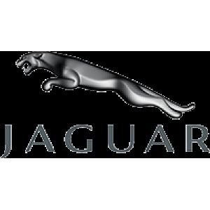 ΑΝΤΑΛΛΑΚΤΙΚΑ Jaguar